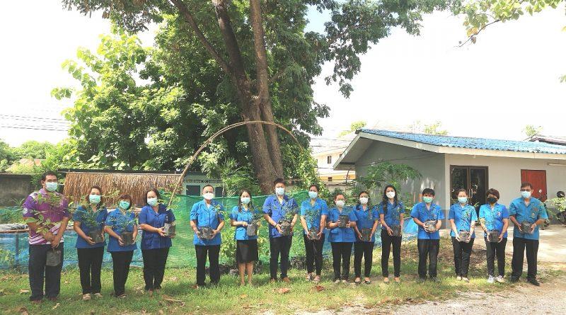 เริ่มแล้ว..!!! ล้านต้น บนแผ่นดิน ปลูก ปัก รักษา เพิ่มพื้นที่สีเขียวให้ประเทศ กศน.พรานกระต่าย กำแพงเพชร ร่วมจัดสภากาชาดไทย